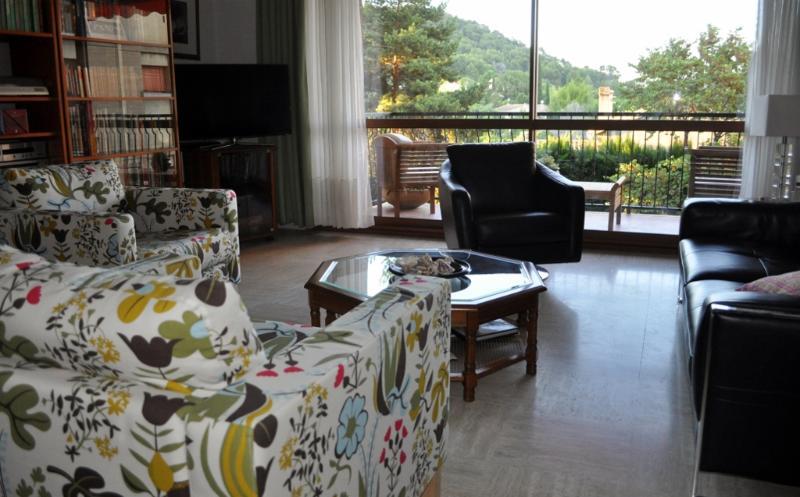 lounge - Beautiful Apartment, Aix en Provence - Aix-en-Provence - rentals