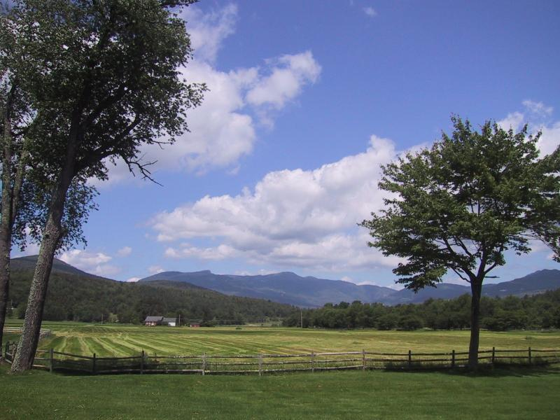 Fabulous 2BR Condo - Spectacular Summer View - Magnificient Stowe Condo-Unsurpassed View-Sleeps 6 - Stowe - rentals