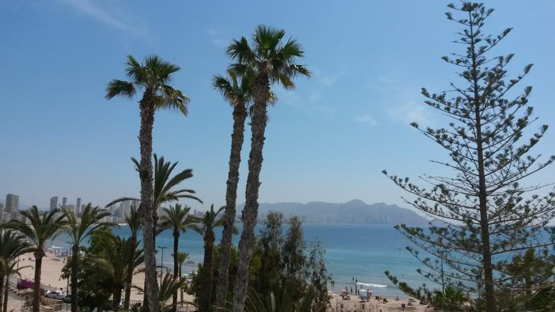Incredible apartment on the beach - Image 1 - Benidorm - rentals