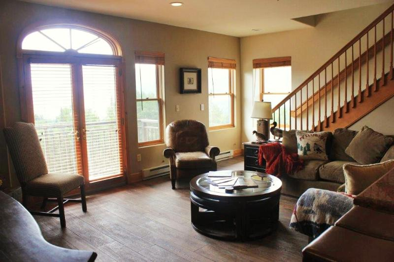 open floor plan.  Nice & cozy - Bear Creek Lodge, Unit 412 - Telluride - rentals
