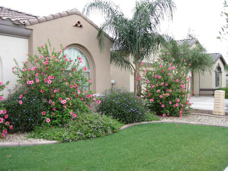 Frontyard - SUNDANCE VILLA - Executive villa with heated pool, jacuzzi, billiard - 1 mile from Wigwam Golf club - Litchfield Park - rentals