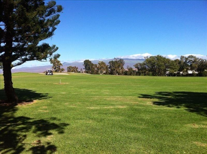Golf course - Waikoloa Village Golf, Swim & Surf - Waikoloa - rentals