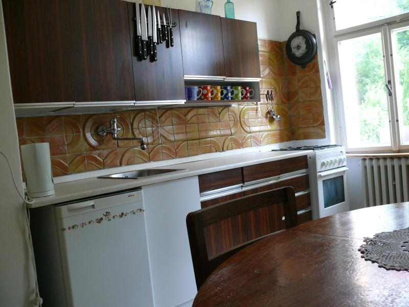 The flat has a large kitchen. - Karlovy Vary the apartment with a beautiful view - Karlovy Vary - rentals
