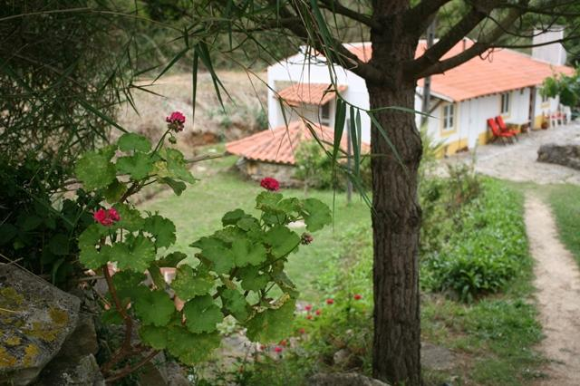 view and land down to house - Spacious Rustic cottage in beautiful gardens - Sao Martinho do Porto - rentals