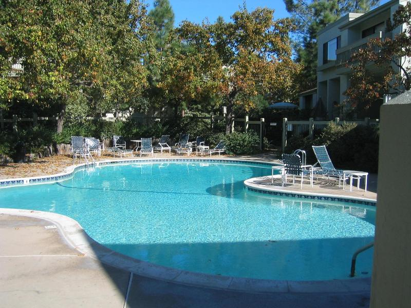 swimming pool, sauna and jaccuzi - Hobiedom La Jolla Village - La Jolla - rentals