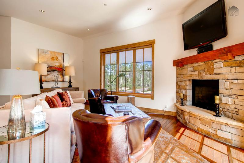 The main living area has a fireplace along with a mounted television and blu-ray player. - White snow, blue skies - Mountain village core, private elevator, foosball table - The Blue Bird at Belvedere Park - Mountain Village - rentals