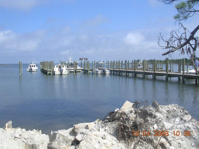 Your visit to the island starts here - Our little bit of Heaven at Dog Island - Carrabelle - rentals