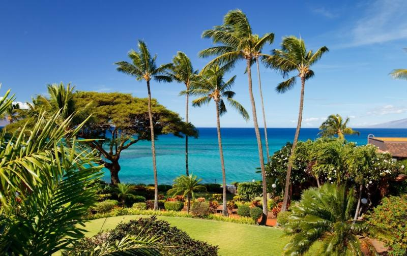 View from the Lanai, 45 yds from the ocean - ROMANTIC OCEANFRONT BEACH RESORT FROM $99 - Lahaina - rentals