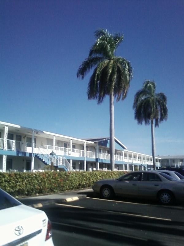 front view - South Florida Condo near Ocean for Snowbirds - Hallandale - rentals