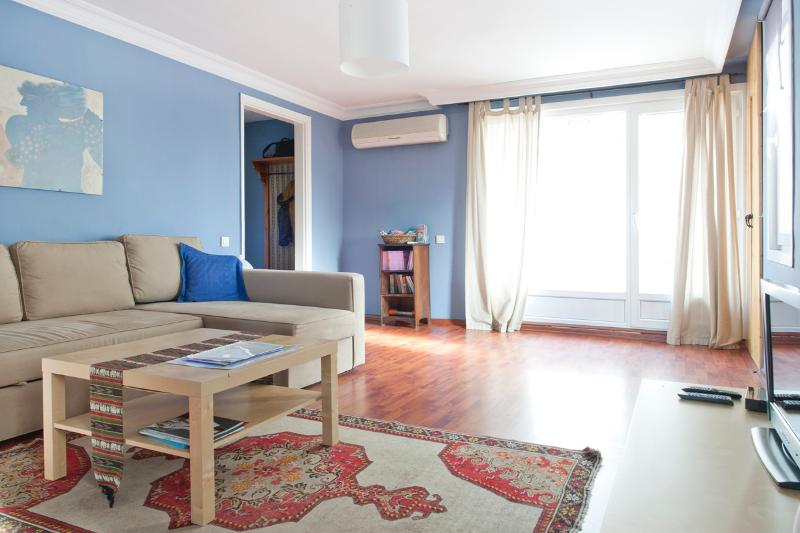 Living room leading out to front terrace - Amazing terraced flat in Sultan Ahmet - Istanbul - rentals