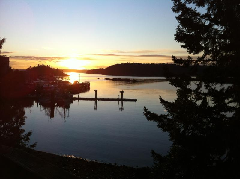 Sunrise over the ocean - Oceanfront 2 bedroom with hot tub, pets welcome! - Nanaimo - rentals