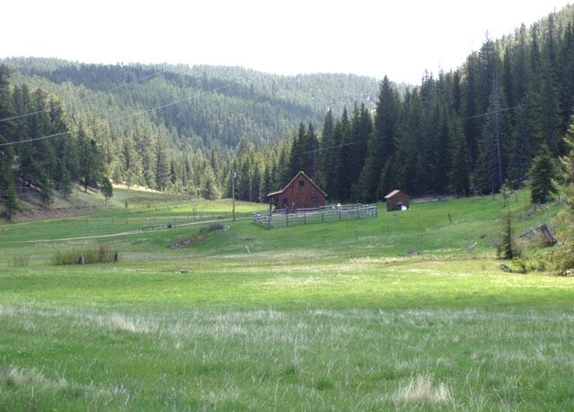 LONE SPRUCE RANCH - Image 1 - Rochford - rentals