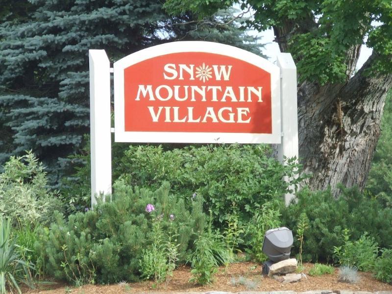 Mount Snow Condo Rental - Fireplace, Indoor Pool - Image 1 - West Dover - rentals