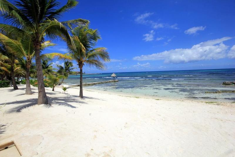 Beach in Front - $160.00/ NIGHT SUMMER!!! AWESOME 4TH STORY 2 BR VIEWS BBQ WIFI GREAT DECK!! - Puerto Aventuras - rentals