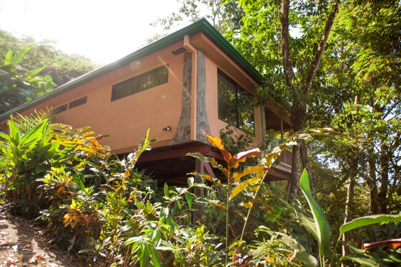 view from driveway - Casa Macaw, Rain Forest Gem! Walk To Town - Manuel Antonio National Park - rentals