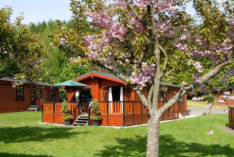 Sandwood Lodge - my log cabin at Loch Lomond - Sandwood Lodge, Rowardennan, Loch Lomond - Rowardennan - rentals