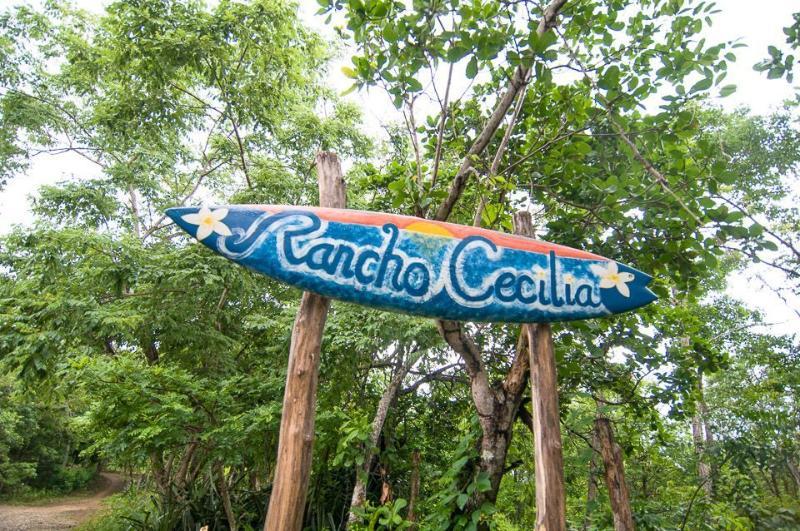 Rancho Cecilia an Eco-rancho by Playa Maderas - Jungle Cabana at Eco-Rancho Cecilia Playa Maderas - San Juan del Sur - rentals