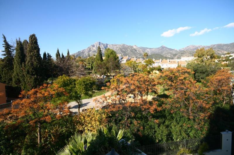 1377 - 3 bed apt, central Marbella, beach 650m - Image 1 - Marbella - rentals