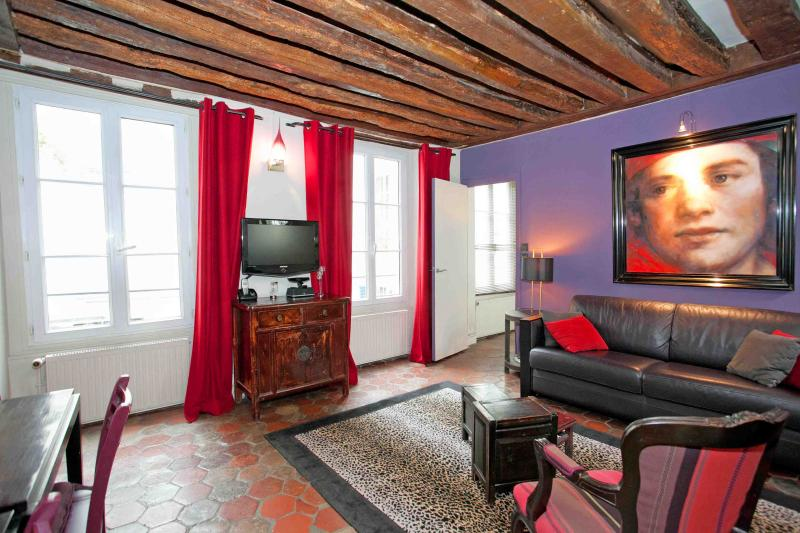 The sitting room and the windows overlooking the courtyard - 83a2c262-77c2-11e2-8343-782bcb2e2636 - Paris - rentals