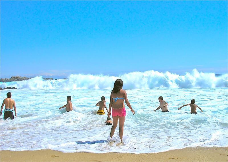 10 Mins walk to this beach - TRAVELLERS DISCOUNT.  CHILE VALPARAISO LAS CRUCES - Valparaiso - rentals