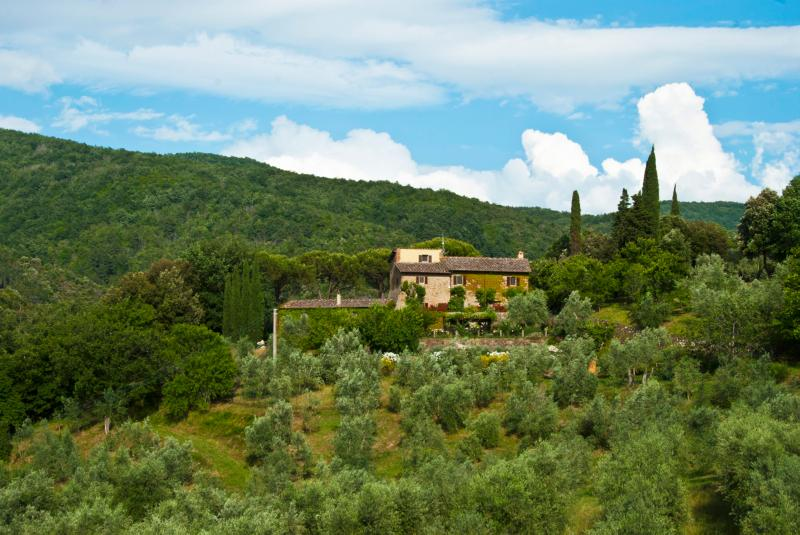 View of the villa and olive grove from the Castello Mugnana across the valley - Exquisite 16th Century Farmhouse in Chianti - Strada in Chianti - rentals
