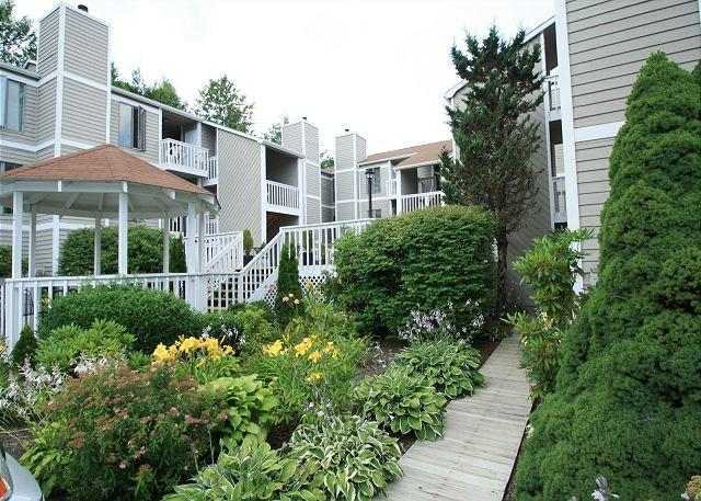 Royal Oak 236 great In-Town condo location, walk to Main Street - Image 1 - Blowing Rock - rentals
