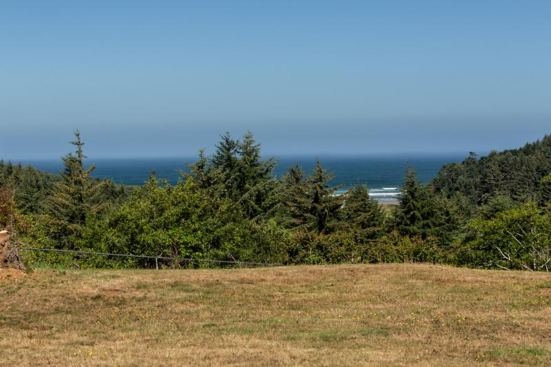 View from the Property - Merchants Beach Ranch House - Bandon - rentals