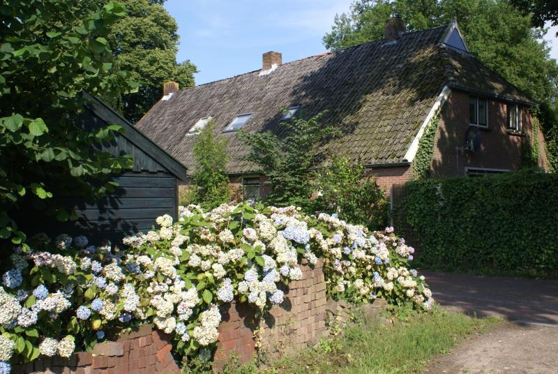 'Under the Oaks' - a farmhouse dating from 1840 - Farmhouse in Beautiful Rural Diever, Drenthe - Diever - rentals