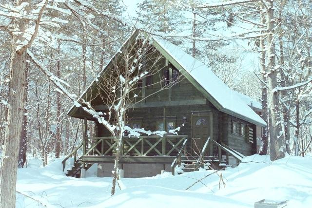 Big Foot Cabin - Big Foot Cabin Hakuba - Hakuba-mura - rentals