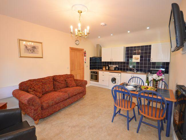 Open plan lounge/kitchen/diner - TYTWT - Llangeitho - rentals