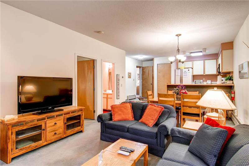 The Woods Resort & Spa-WV34 - Image 1 - Killington - rentals