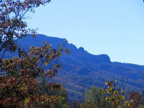 Spectacular View of Grandfather Mountain - $95/nt.Special,pls,httb,WiFi,no stairs,private,vie - Boone - rentals