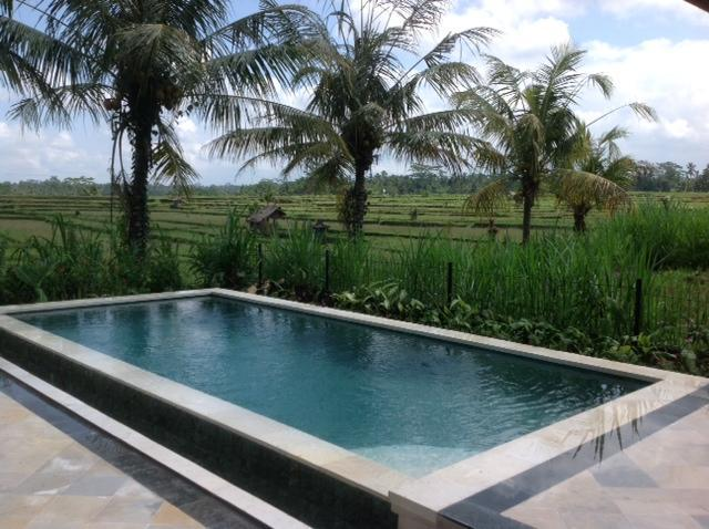 Ubud Rice Field Villa, Private Retreat With Views - Image 1 - Sterling - rentals