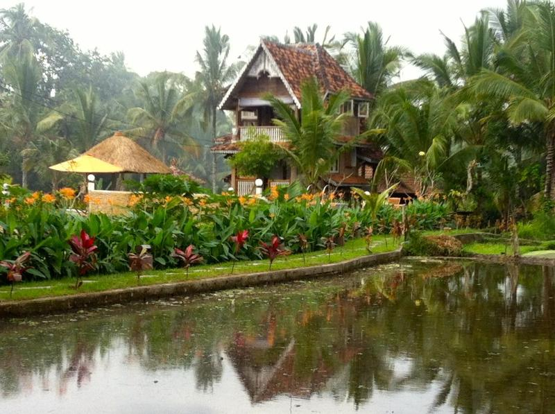 The Rice Joglo stands amidst tranquil rice fields - The Rice Joglo - Ubud - rentals