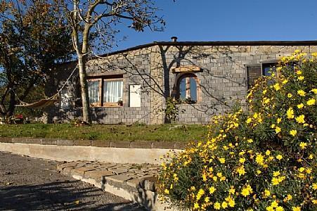Villa Annamaria - Image 1 - Sant'Agata sui Due Golfi - rentals