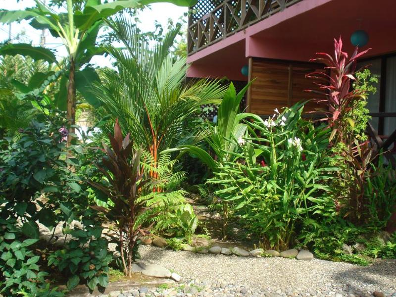 Coconut Love B&B A/C Apartment with Balcony - Image 1 - Cahuita - rentals