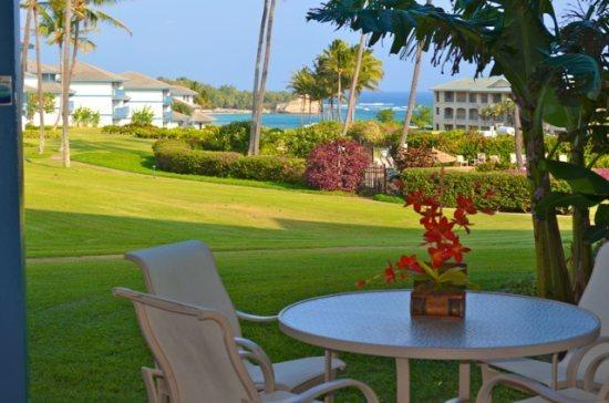 View - Free Car* with Poipu Sands 115 - Immaculate and beautifully remodeled 1 bedroom, OCEAN VIEW, in Poipu - Poipu - rentals