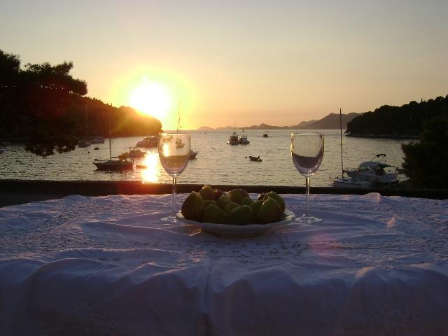 view from the villa's terrace - Villa ANDRO  - Cavtat,Croatia - Cavtat - rentals