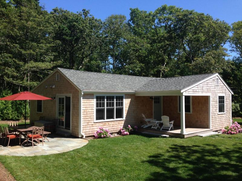 Large, sunny yard! - All New Cottage in Chatham Near Hardings Beach - Chatham - rentals
