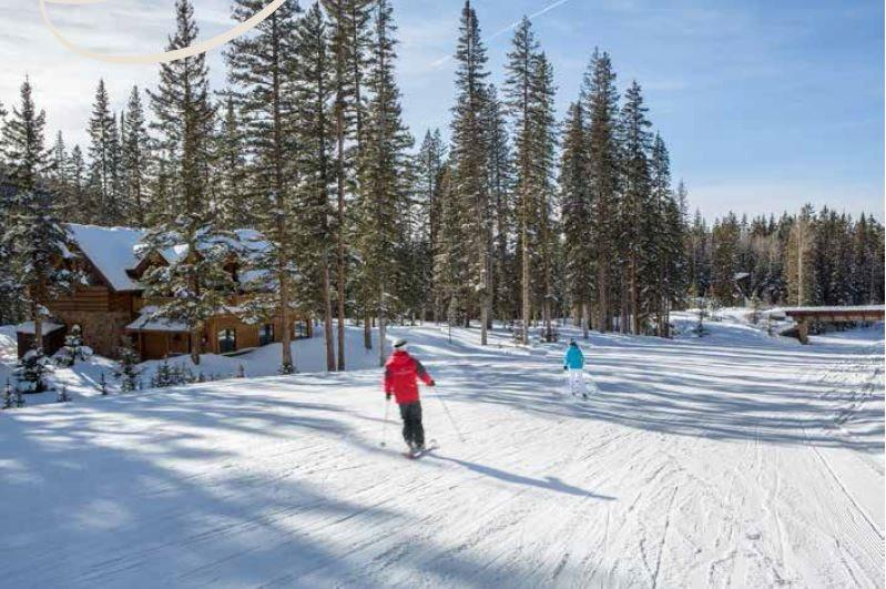 True Ski In Ski Out Vacation Home Right off of the Galloping Goose Double Green Ski Trail - Benchmark Cabin - 2 Bd Plus Guest Quarters / 4 Ba - Sleeps 6 - TRUE SKI IN SKI OUT Cozy Log Vacation Home - Ski Access onto Galloping Goose - Telluride - rentals