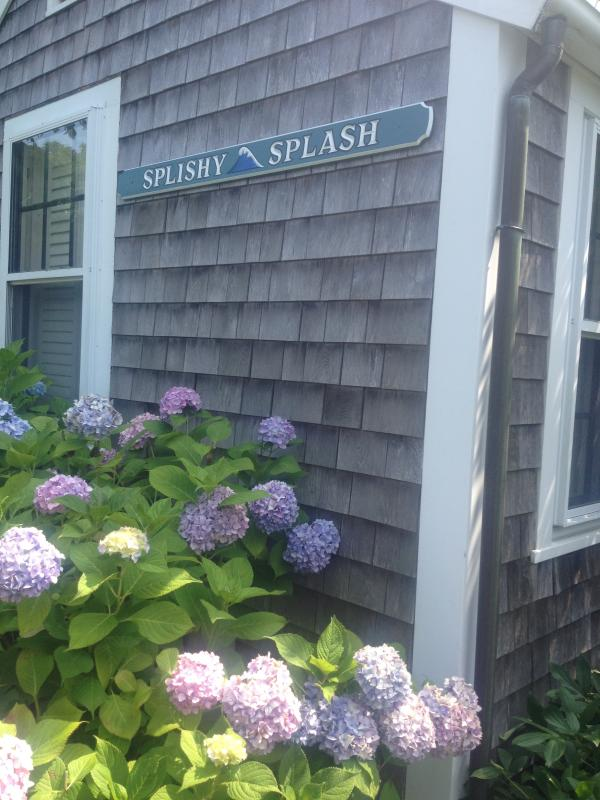 Splishy Splash - Newly renovated 3-bedroom cottage Nantucket Town - Nantucket - rentals