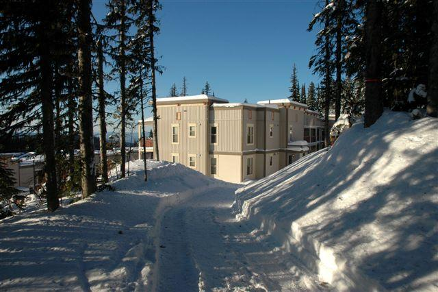 Ski right to the door - Location, location!  Ski in/out  Pet Friendly too! - Silver Star Mountain - rentals