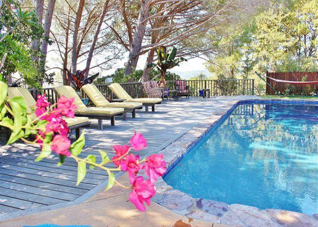 Private Paradise in Marin with Pool - Image 1 - San Rafael - rentals