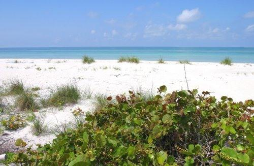 Pristine, unspoiled and never crowded beach. - Beautiful Gulf Views! Pet Friendly! Island Living! - Placida - rentals