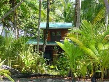 Front view of the cabin - Beach House with stunning view of the Pacific - - Playa Zancudo - rentals