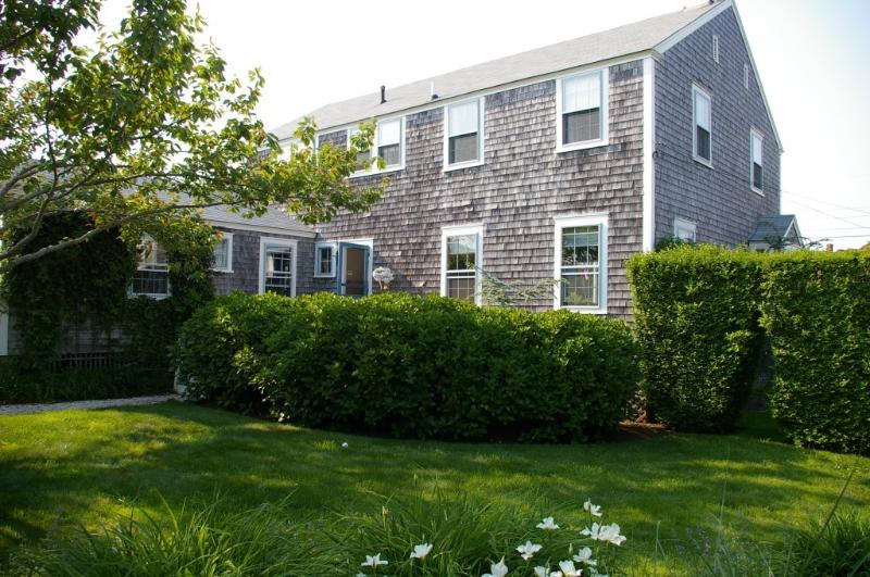 Walk to the Beach. Great Location. - Image 1 - Nantucket - rentals