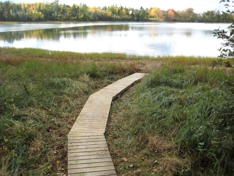 path to kayaks - Warm Water for Kayaking, Private House - South Thomaston - rentals