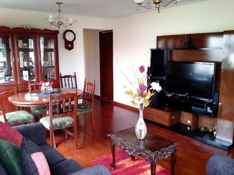 Bright And Ample Apartment In Beautful Barranco - Image 1 - Lima - rentals