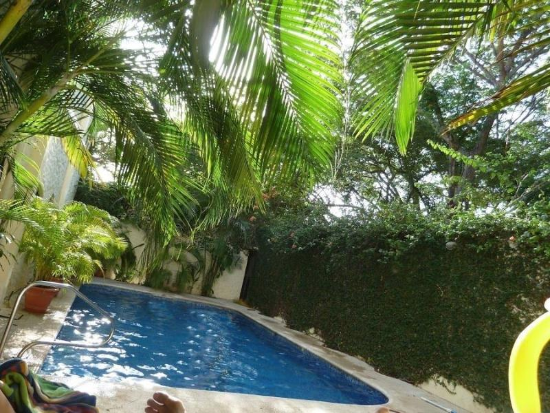 Condo Verde Buena Vida 4 - Image 1 - Tamarindo - rentals