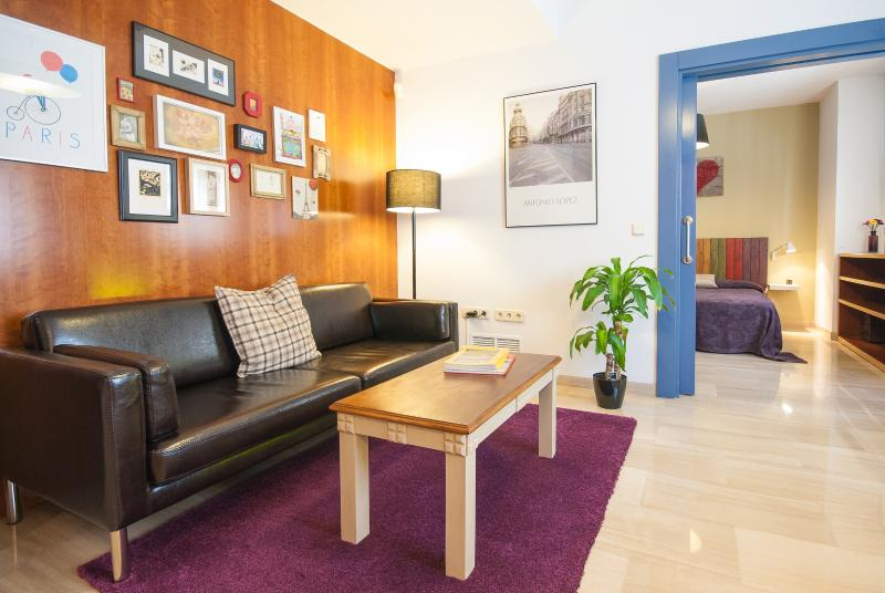 Living - In the center of Granada. Free parking and Wi-Fi - Province of Granada - rentals